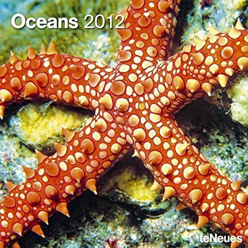 2012 Oceans Grid Calendar: Diverse
