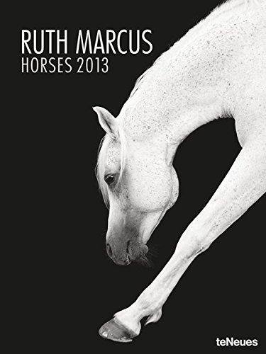 9783832755683: Horses 2013