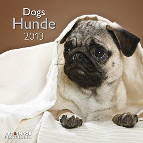 9783832757625: Hunde 2013 Broschürenkalender