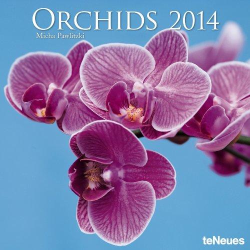 9783832762117: 2014 Orchids Wall Calendar