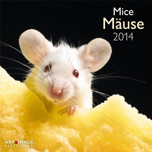 9783832762735: Mäuse 2014 Broschürenkalender