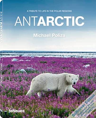 9783832795900: AntArctic (English and Spanish Edition)