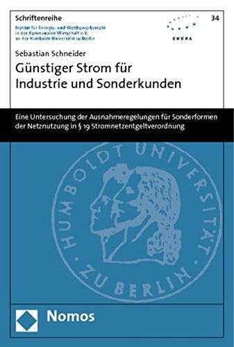 Günstiger Strom für Industrie und Sonderkunden: Sebastian Schneider