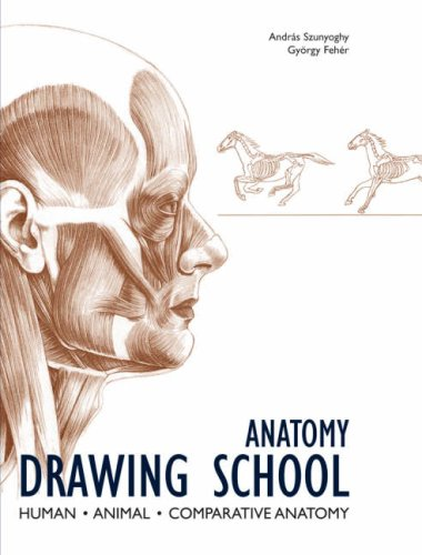 9783833145315: Anatomy Drawing School: Human, Animal, Comparative Anatomy