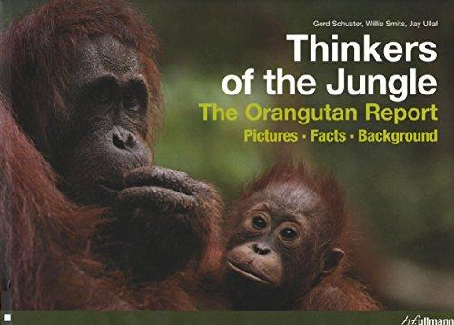 Thinkers of the Jungle:The Orangutan Report- Pictures,: Schuster, Gerd &