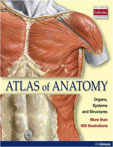 9783833151927 Atlas Of Anatomy Ullmann Abebooks 3833151927
