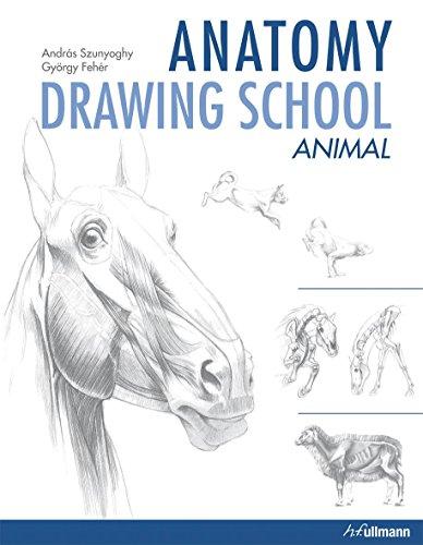 9783833157363: Anatomy Drawing School: Animal Anatomy