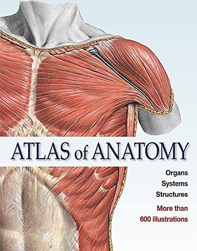 Atlas of Anatomy: The Human Body Described: EDITORIAL TEAM SOBOTTA