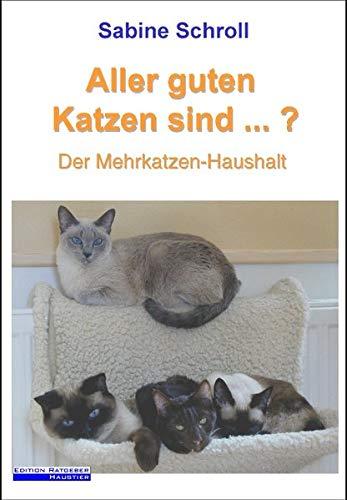 9783833457470: Aller guten Katzen sind ...?: Der Mehrkatzen-Haushalt