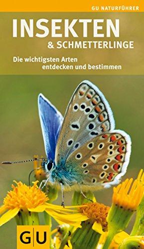 9783833826146: Insekten und Schmetterlinge: Die wichtigsten Arten entdecken und bestimmen