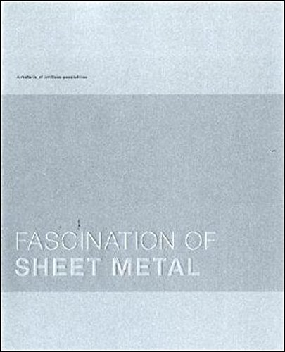 Fascination of Sheet Metal: Gabriela Buchfing