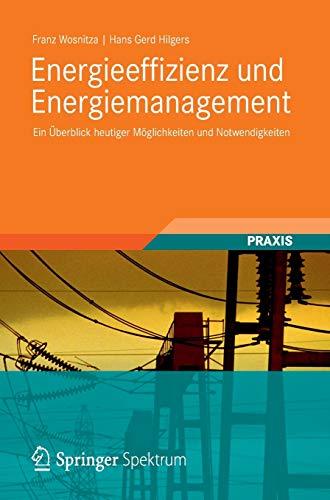 9783834819413: Energieeffizienz und Energiemanagement: Ein Überblick heutiger Möglichkeiten und Notwendigkeiten