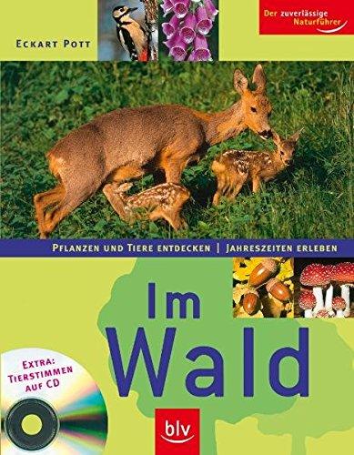 9783835401853: Im Wald/Mit CD: Pflanzen und Tiere entdecken - Jahreszeiten erleben