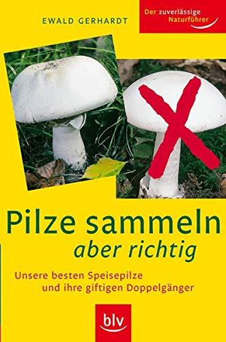 9783835402546: Pilze sammeln aber richtig: Unsere besten Speisepilze und ihre giftigen Doppelgänger