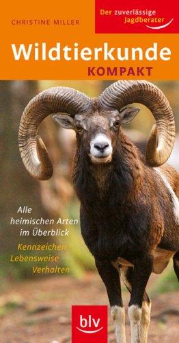 9783835403383: Wildtierkunde kompakt: Alle heimischen Arten im Überblick Kennzeichen · Lebensweise · Verhalten
