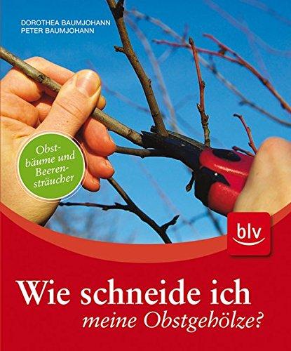 9783835404373: Wie schneide ich meine Obstgeh�lze?: Obstb�ume und Beerenstr�ucher