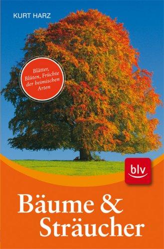 Bäume und Sträucher: Blätter, Blüten, Früchte der: Harz, Kurt