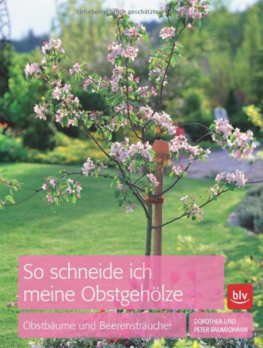 9783835408449: So schneide ich meine Obstgehölze: Obstbäume und Beerensträucher