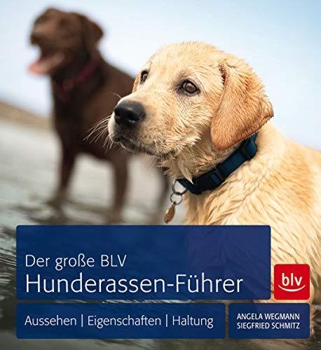Der große BLV Hunderassen-Führer. Aussehen, Eigenschaften, Haltung.: Wegmann, Angela und