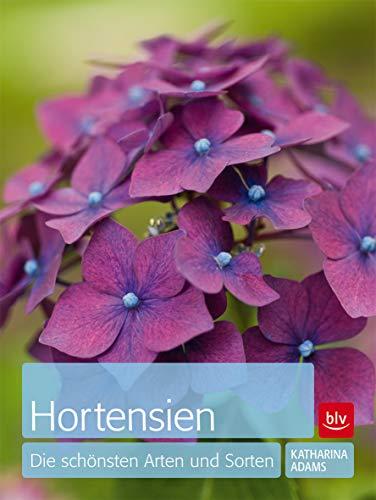 9783835409194: Hortensien: Die schönsten Arten und Sorten