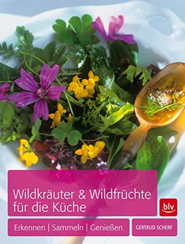 9783835412101: Wildkräuter & Wildfrüchte für die Küche: Erkennen | Sammeln | Genießen
