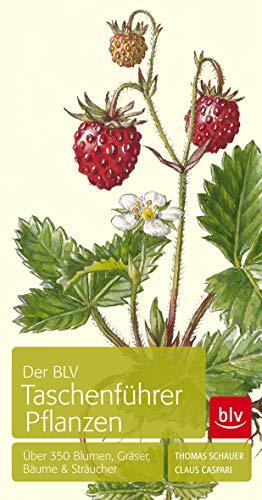 9783835413306: Der BLV Taschenführer Pflanzen