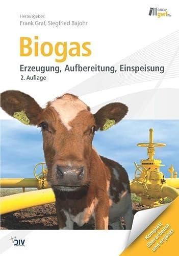 9783835633636: Biogas: Erzeugung - Aufbereitung - Einspeisung