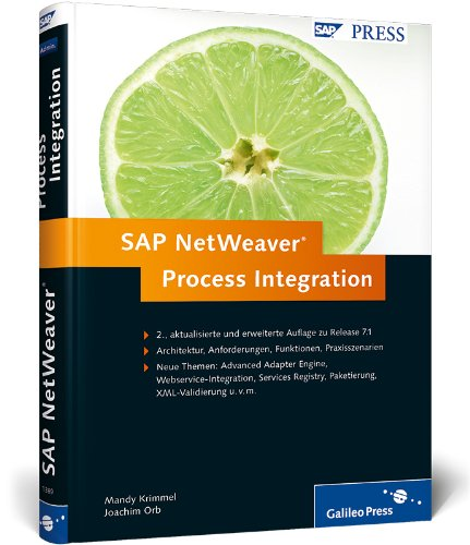 9783836213899: SAP NetWeaver Process Integration
