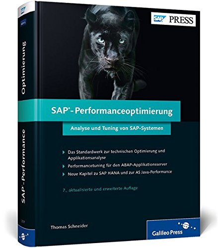 SAP-Performanceoptimierung: Thomas Schneider