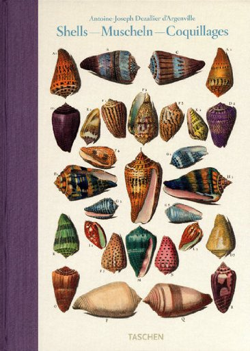 Shells / Muscheln / Coquillages: Conchology, or: Antoine-Joseph D�zallier D'Argenville