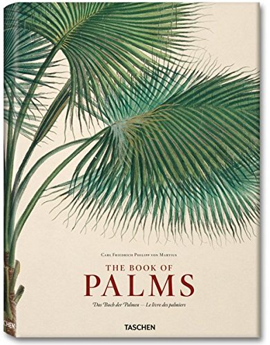 9783836517799: Martius: The Book of Palms