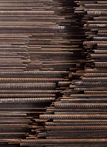 9783836546591: Ai Weiwei (Collector's edition)