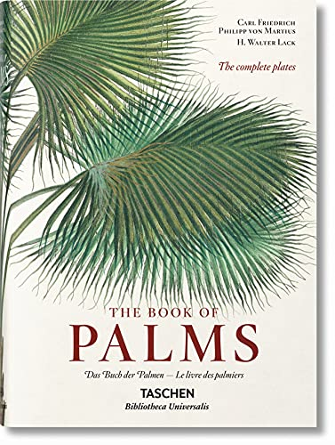 Martius: The Book of Palms: H Walter Lack