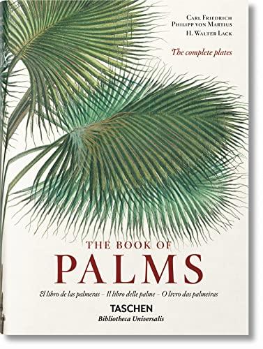 9783836556248: Ko-Martius. the Book of Palms Iep