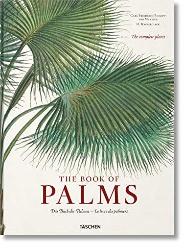 9783836566148: Book Of Palms