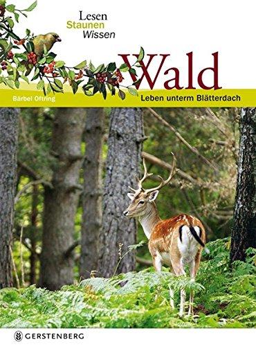 9783836955690: Wald. Lesen Staunen Wissen