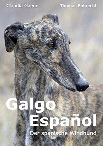Galgo Espaol: Claudia Gaede