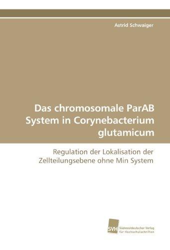 Das chromosomale ParAB System in Corynebacterium glutamicum: Astrid Schwaiger