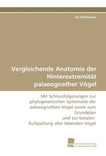 Vergleichende Anatomie der Hinterextremität palaeognather Vögel: Mit Schlussfolgerungen ...