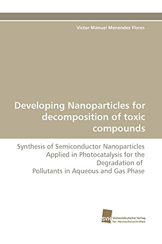 Developing Nanoparticles for Decomposition of Toxic Compounds: Victor Manuel Menendez Flores