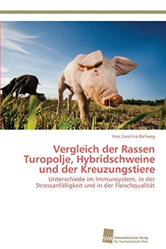Vergleich der Rassen Turopolje, Hybridschweine und der Kreuzungstiere: Ines Carolina Ballweg