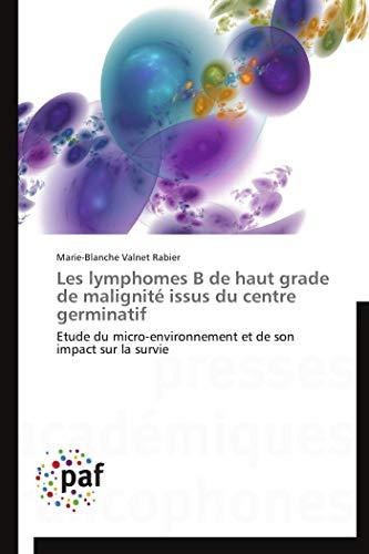 9783838145334: Les lymphomes b de haut grade de malignité issus du centre germinatif