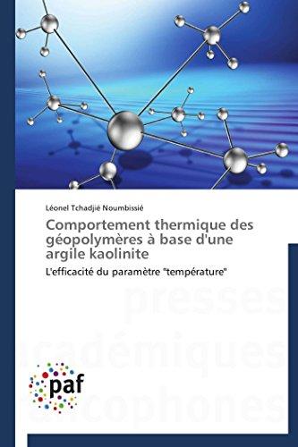9783838178967: Comportement thermique des géopolymères à base d'une argile kaolinite (OMN.PRES.FRANC.)