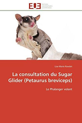 9783838180885: La consultation du sugar glider (petaurus breviceps)