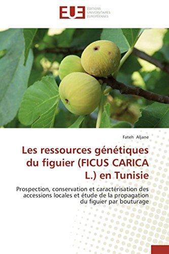 9783838186368: Les ressources g�n�tiques du figuier (FICUS CARICA L.) en Tunisie: Prospection, conservation et caract�risation des accessions locales et �tude de la propagation du figuier par bouturage