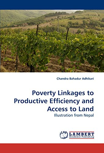 9783838324678: Poverty Linkages to Productive Efficiency and Access to Land: Illustration from Nepal