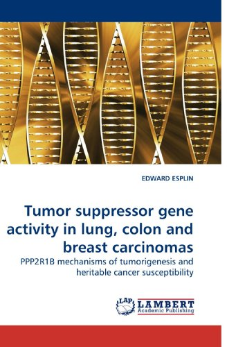 Tumor suppressor gene activity in lung, colon and breast carcinomas: PPP2R1B mechanisms of ...