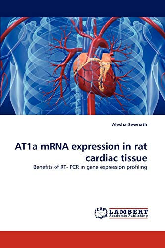 9783838376646: AT1a mRNA expression in rat cardiac tissue