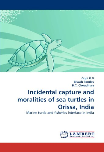 Incidental capture and moralities of sea turtles