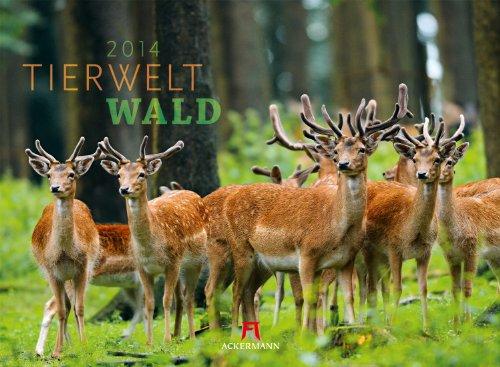 9783838414829: Tierwelt Wald 2014